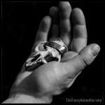 Tims_Hands_Holding_Skull_01-tag
